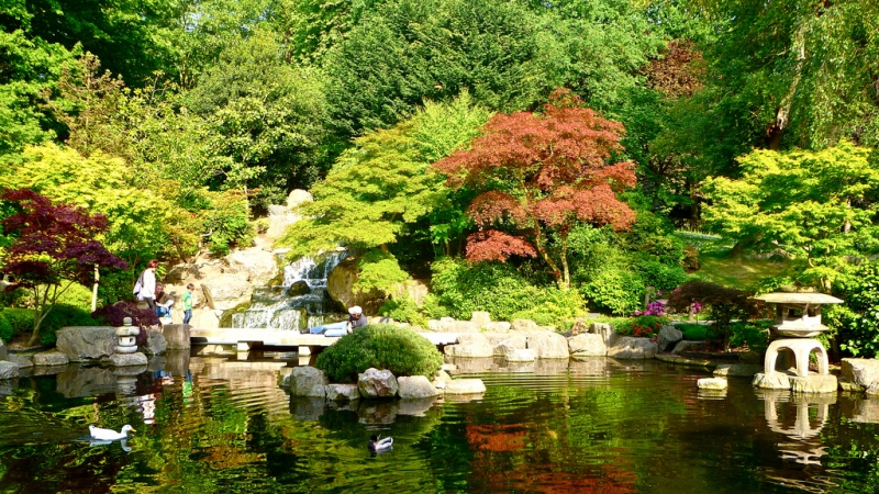 Holland Park de Londres